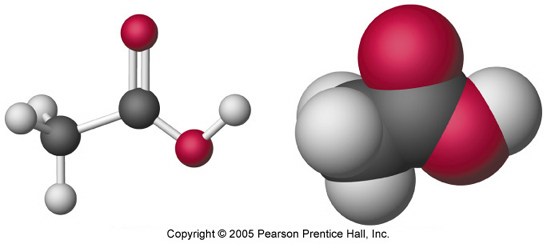Phosphorus Atom 3D Model http://wpscms.pearsoncmg.com/wps/media/objects/1053/1078874/ist/ch02_06.html